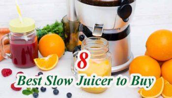 Best Slow Juicers – Top 8 Reviews & Guides 2021