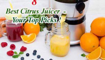 Best Citrus Juicer – Top 8 Reviews & Guides 2021