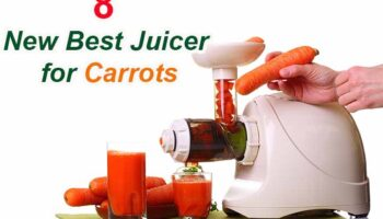 Top 8 Best Juicer for Carrots in 2021 Reviews