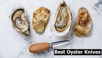 Top 6 Best Oyster Knives for The Money in 2021 Reviews