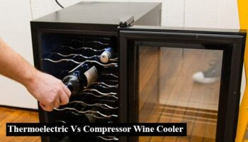 Thermoelectric Vs Compressor Wine Cooler – Overall Comparison